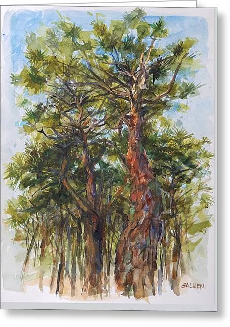 Pitch Pines, Cape Cod Greeting Card by Peter Salwen
