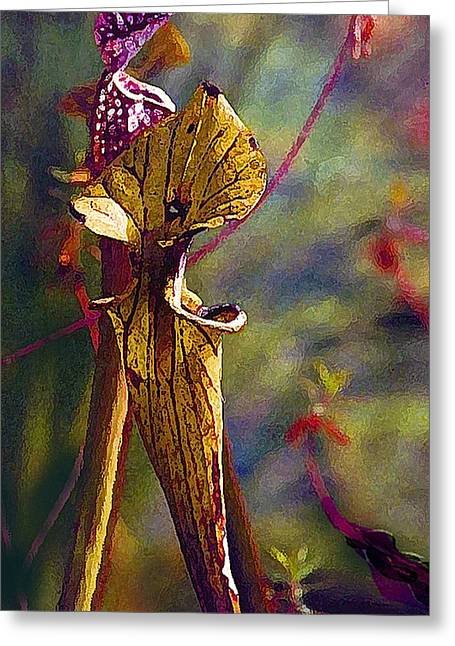 Pitcher Plant Greeting Card by Janis Nussbaum Senungetuk