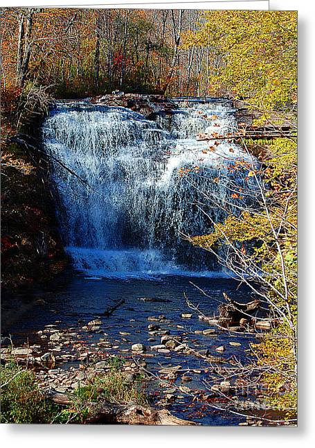 Pixley Falls State Park Greeting Card by Diane E Berry