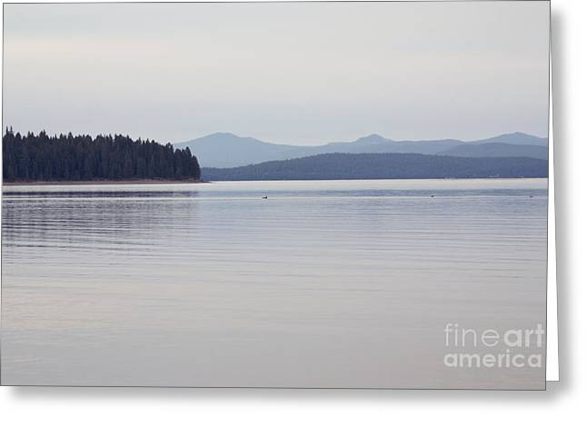 Placid Mountain Lake Greeting Card
