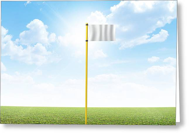 Plain Grass And Blue Sky Greeting Card by Allan Swart
