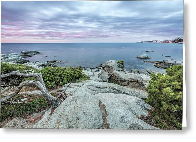 Plain Rocks Cove, Sant Antoni De Calonge Greeting Card by Marc Garrido