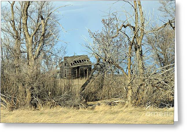 Plains Derelict Greeting Card by Chalet Roome-Rigdon