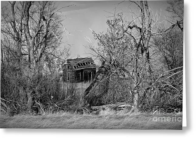 Plains Derelict Monochrome Greeting Card by Chalet Roome-Rigdon