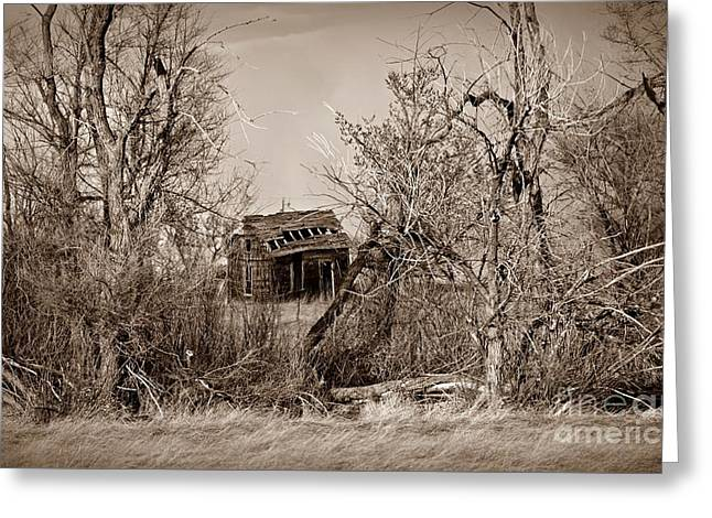 Plains Derelict Sepia Greeting Card by Chalet Roome-Rigdon