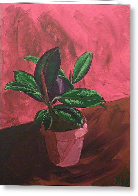 Plant In Ceramic Pot Greeting Card by Joshua Redman