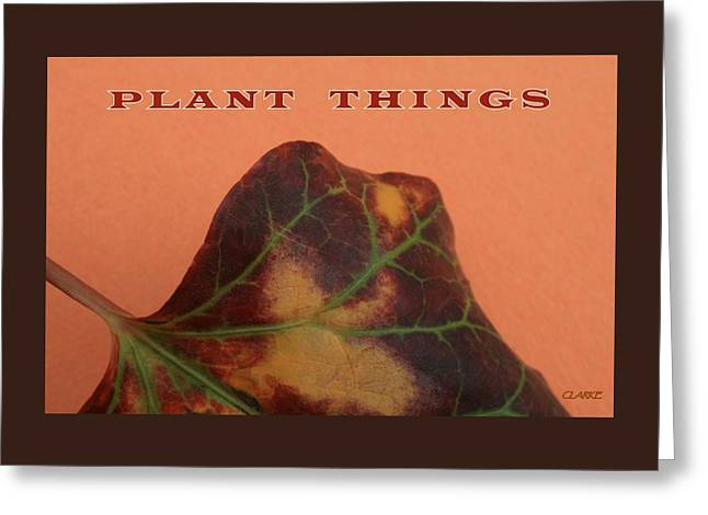 Plant Things Greeting Card by Jean Clarke