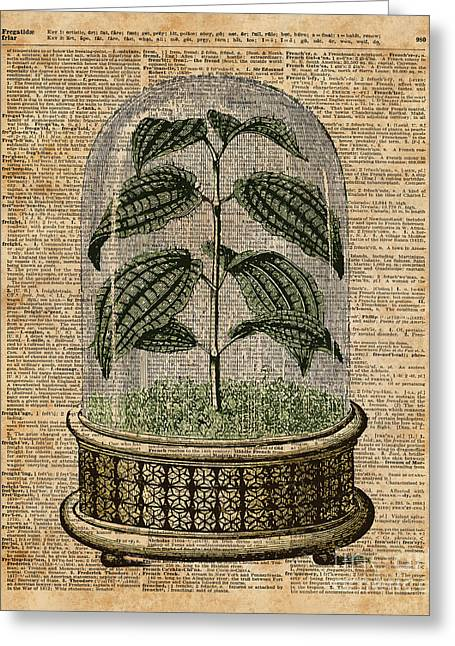 Plant Under Bell-glass Vintage Illustration Over A Old Dictionary Page  Greeting Card by Jacob Kuch