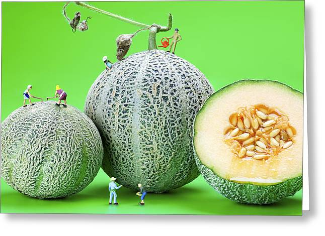 Planting Cantaloupe Melons Little People On Food Greeting Card