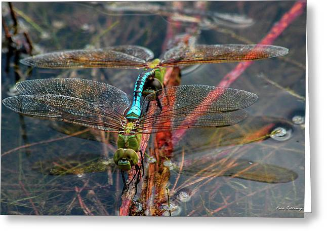 Planting Young Dragonfly Reflections Art Greeting Card