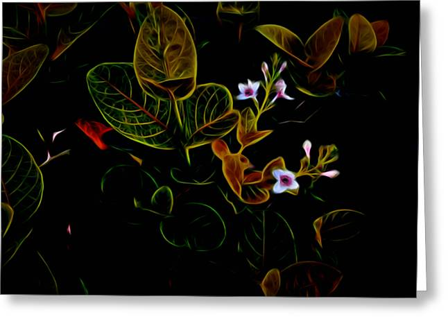 Plants In Abstract 19 Greeting Card