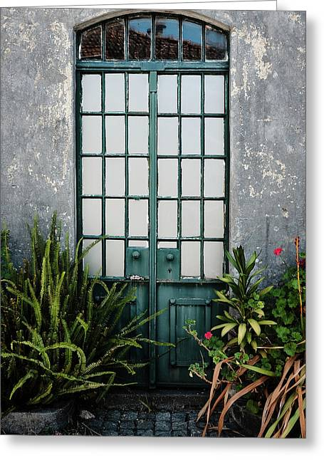 Greeting Card featuring the photograph Plants In The Doorway by Marco Oliveira