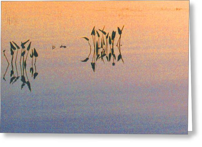 Greeting Card featuring the photograph Plants In The Stillness 22 by Lyle Crump