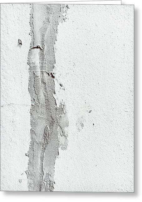 Plaster On A Wall Greeting Card by Tom Gowanlock