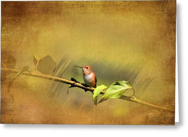 Plate 112 - Hummingbird Grunge Series Greeting Card