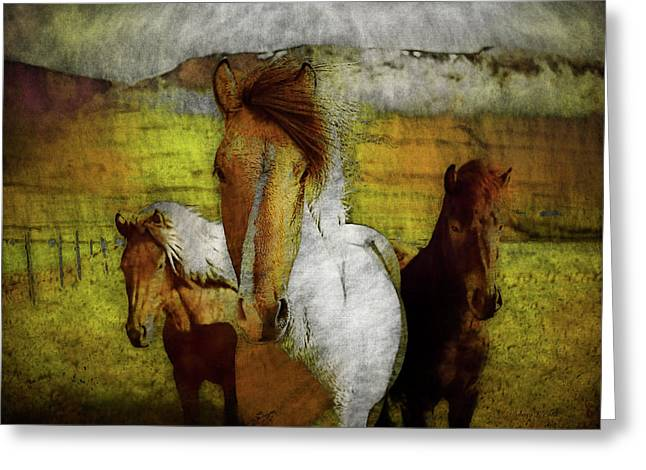 Greeting Card featuring the photograph Plateau Ponies by Bellesouth Studio