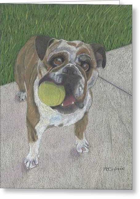 Play With Me Greeting Card by Arlene Crafton
