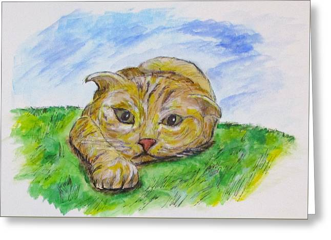 Play With Me Greeting Card by Clyde J Kell