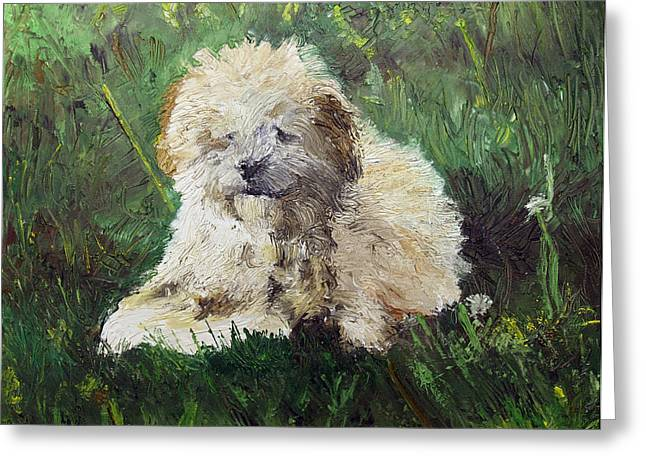 Pallet Knife Greeting Cards - Playful Companion Greeting Card by Pradeep Bangalore
