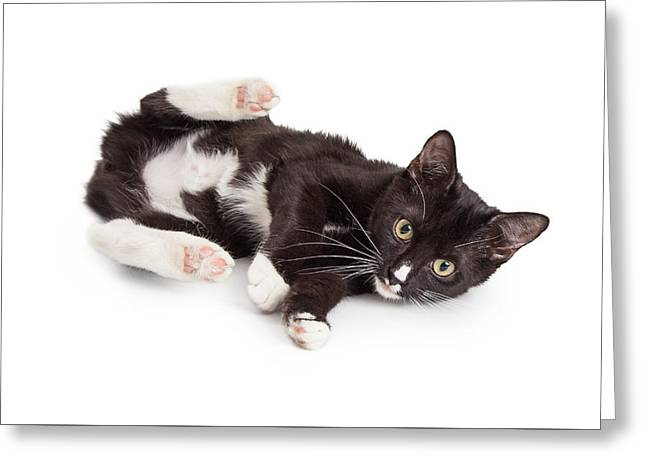 Playful Kitten With Back Legs Up Greeting Card