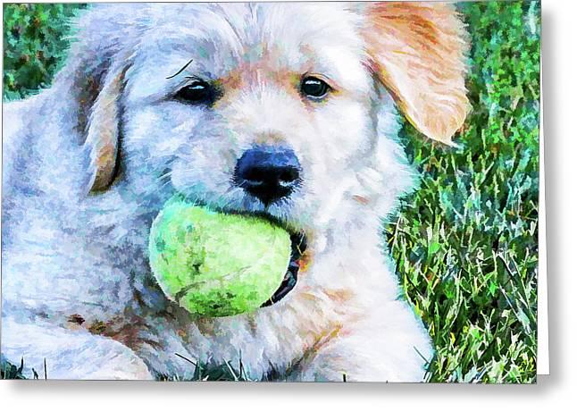 Playful Pup Greeting Card