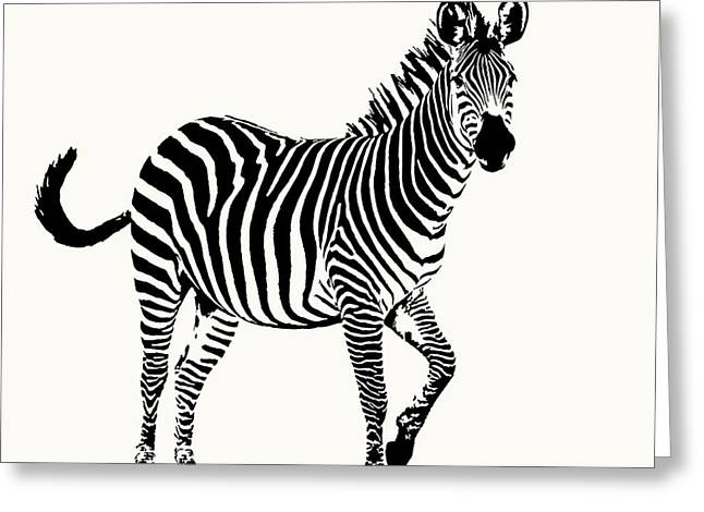 Playful Zebra Full Figure Greeting Card