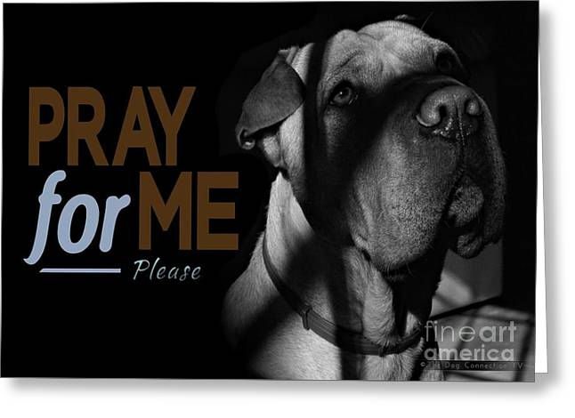 Please Pray For Me Greeting Card