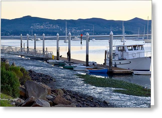 Pleasure Boat Dock Greeting Card by Barbara Snyder