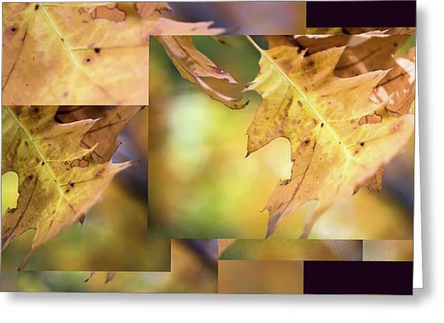 Pleasures Of Autumn -  Greeting Card