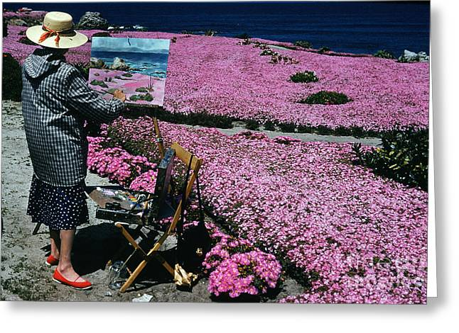 Plein Air Artist Painting The Pink Carpet Of Mesembryanthemum Fl Greeting Card by California Views Mr Pat Hathaway Archives