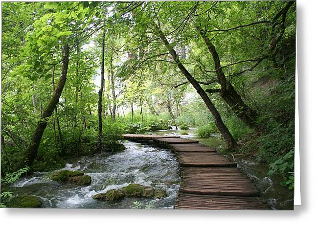 Plitvice Lakes National Park Greeting Card