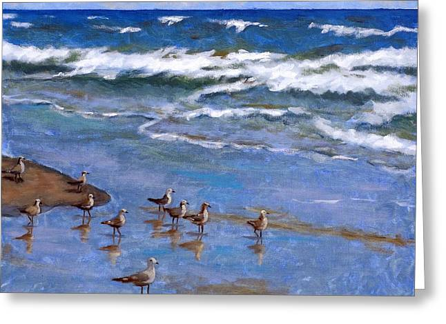 Plover Dance Greeting Card by Brenda Williams