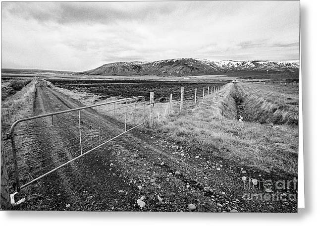 plowed field with drainage ditches dug beside fields in Iceland Greeting Card