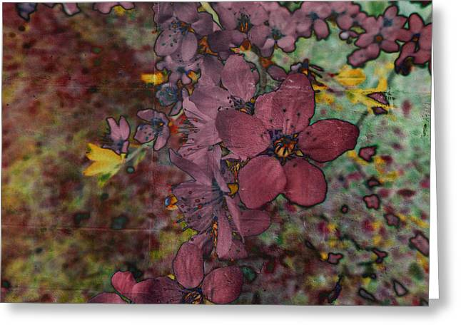 Greeting Card featuring the photograph Plum Blossom by LemonArt Photography
