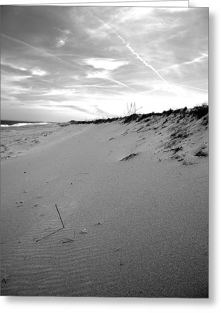 Plum Island Black And White Greeting Card by Sue OConnor