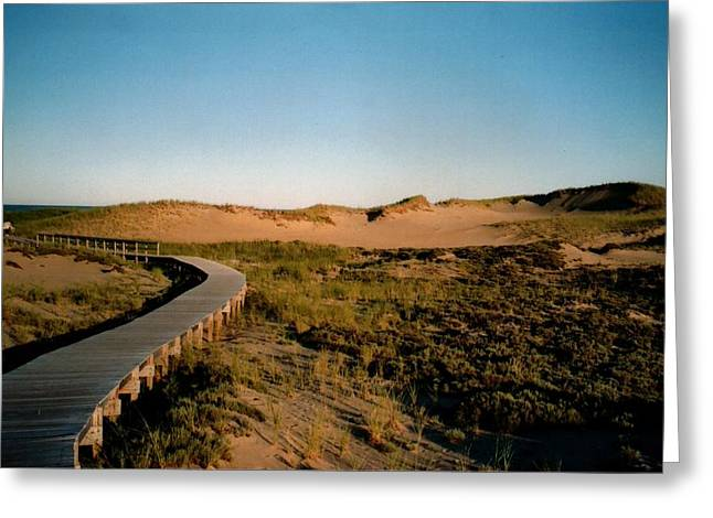 Plum Island Dunes Greeting Card