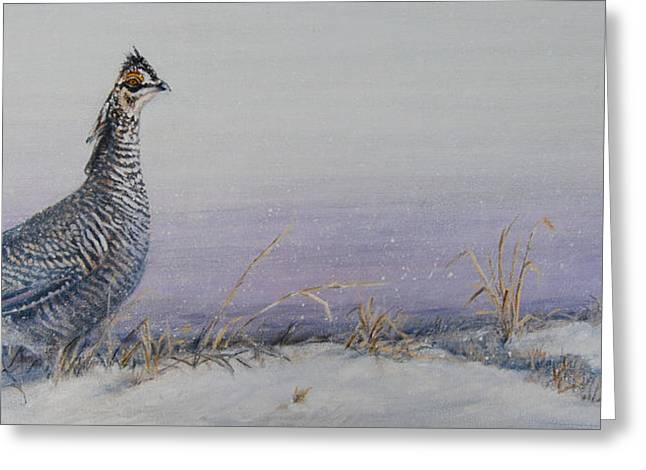 Prairie Chicken Greeting Cards - Plum Skies on The Prairie Greeting Card by Rob Dreyer AFC