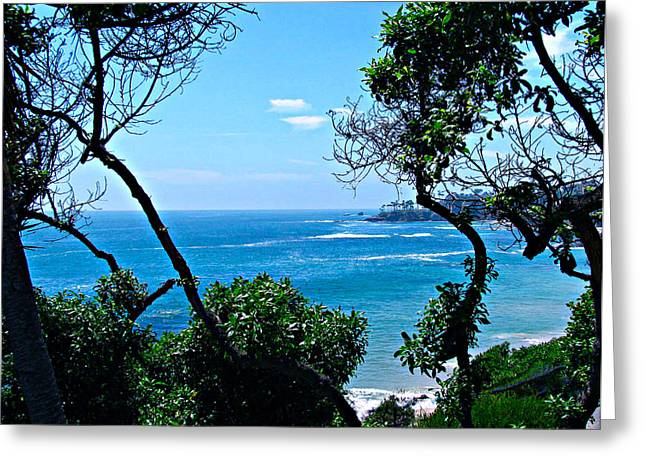 Sweep Of The Land Greeting Cards - Plush Green To Ocean View Greeting Card by Debra     Vatalaro