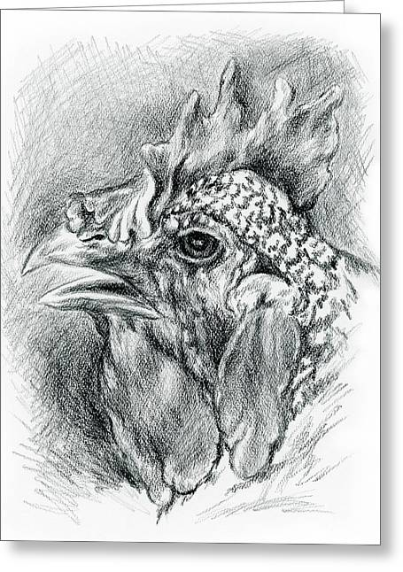 Plymouth Barred Rock Hen In Charcoal Greeting Card