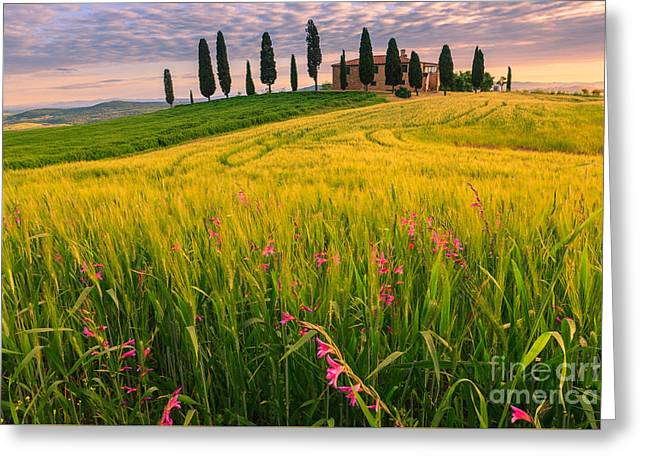 Podere I Cipressini Near Pienza Greeting Card by Henk Meijer Photography