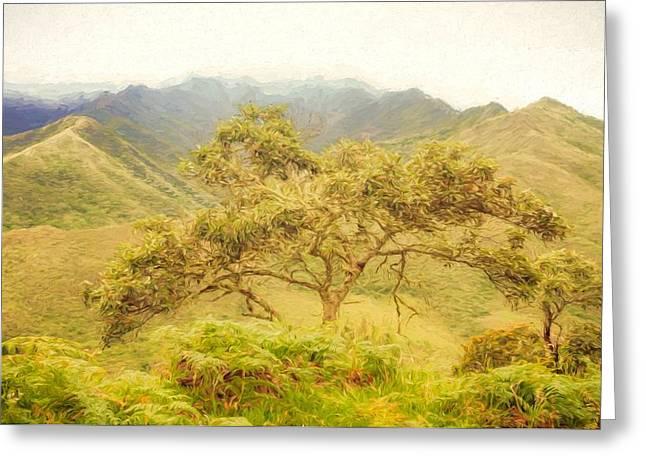 Podocarpus Tree Greeting Card