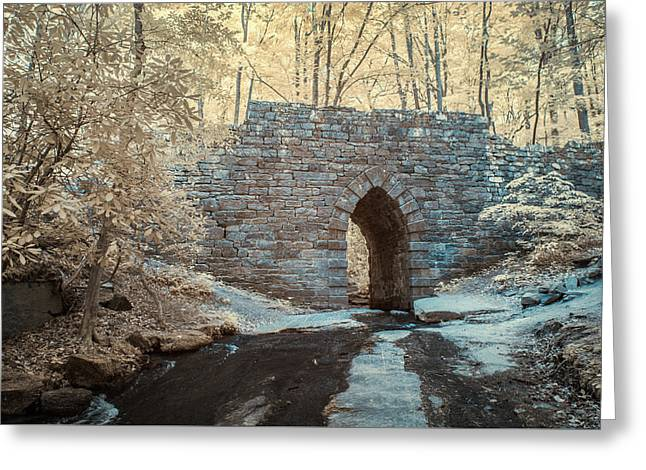 Greeting Card featuring the photograph Poinsett Bridge-ir-10 by Joye Ardyn Durham