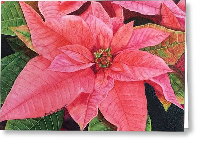 Poinsettia  Greeting Card by Heather Norseth