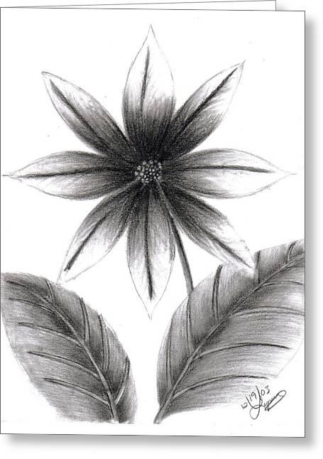 Poinsettia Greeting Card by Lynnette Jones