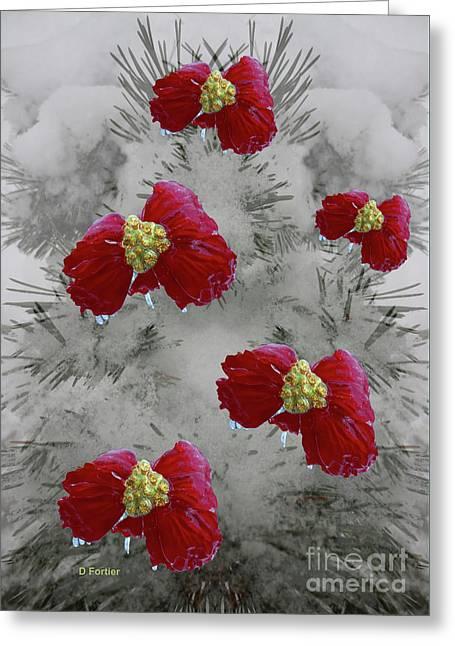 Poinsettias Dans Un Sapin Greeting Card