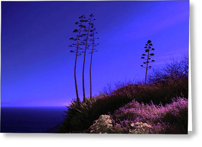 Greeting Card featuring the photograph Point Fermin In Infrared by Randall Nyhof