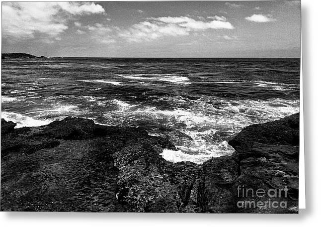 Point Lobos  1 Greeting Card by Chris Berry