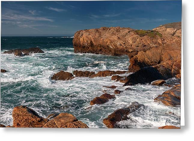 Point Lobos 1 Greeting Card