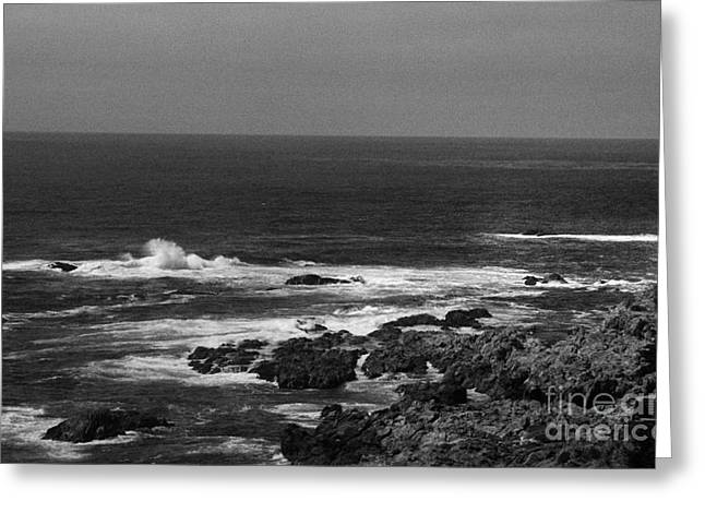 Point Lobos 7 Greeting Card by Chris Berry