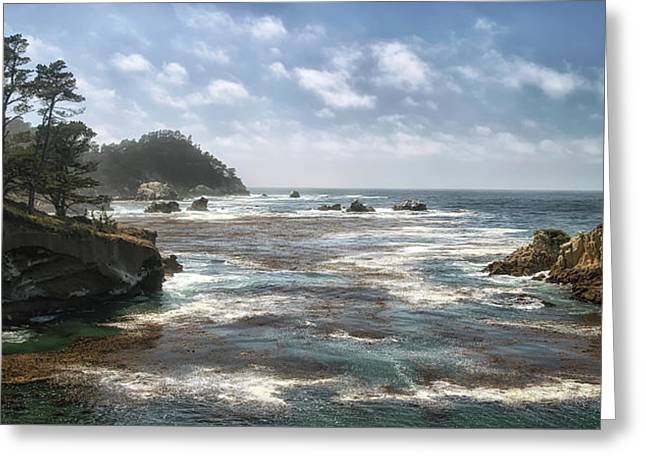 Point Lobos Greeting Card by Art Cole